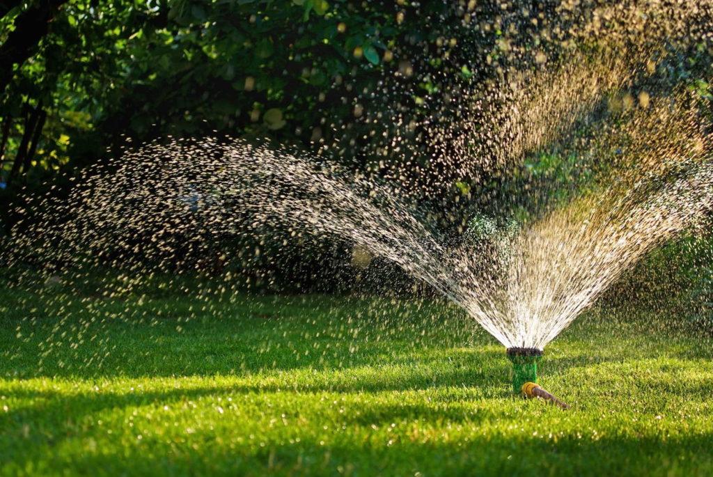 Rasensprenger im garten Wasser Gießen sprengen