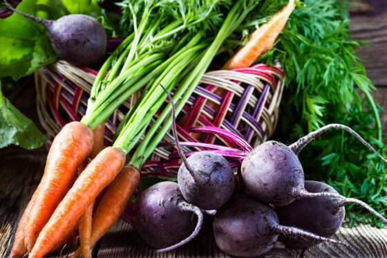 Gemüse im Herbst anbauen: Die 10 besten Pflanzen für die Nachkultur