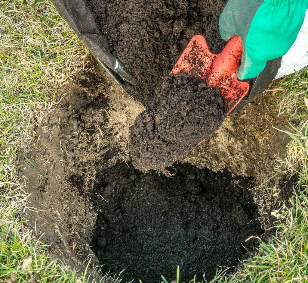 ausgegrabenes Erdloch für Apfelbaum