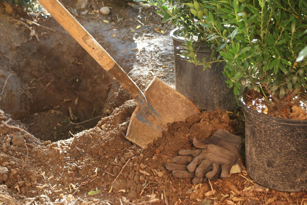 Mit Schaufel ausgegrabenens Erdloch in Beet