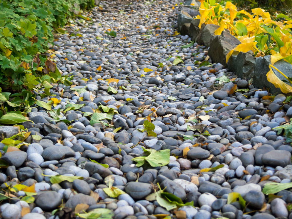 Belaubter Weg im Garten