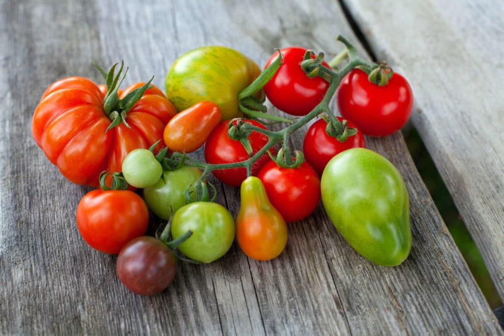 Tomaten liegen auf Holz