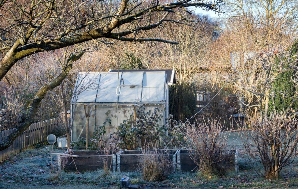 Gewächshaus im Garten im Winter