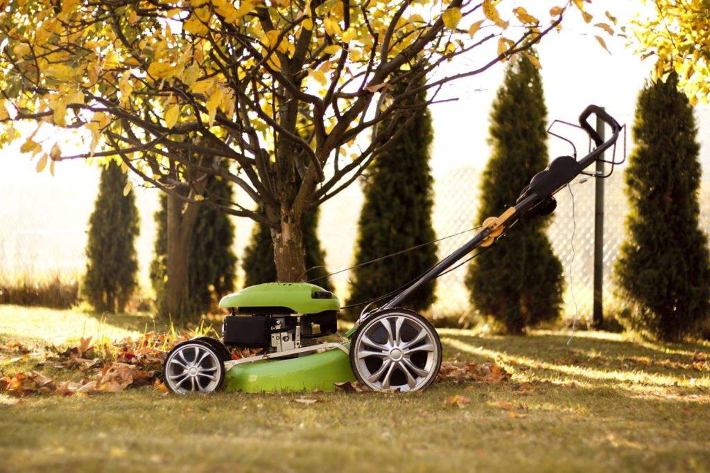 Rasenmäher im Garten mit Laub