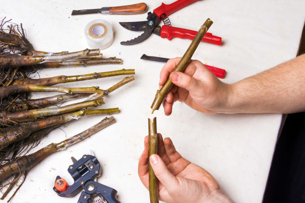 Mann arbeitet mit Veredlungswerkzeug