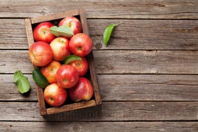 Äpfel richtig ernten & lagern: Hilfreiche Tipps