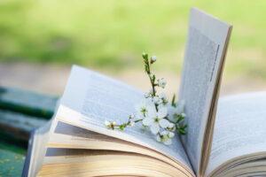 Bild Mit Buch Und Blume