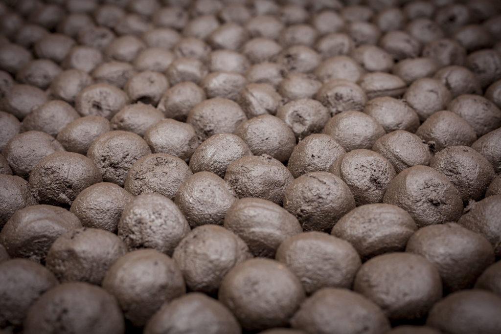 Viele Samenbomben nebeneinander