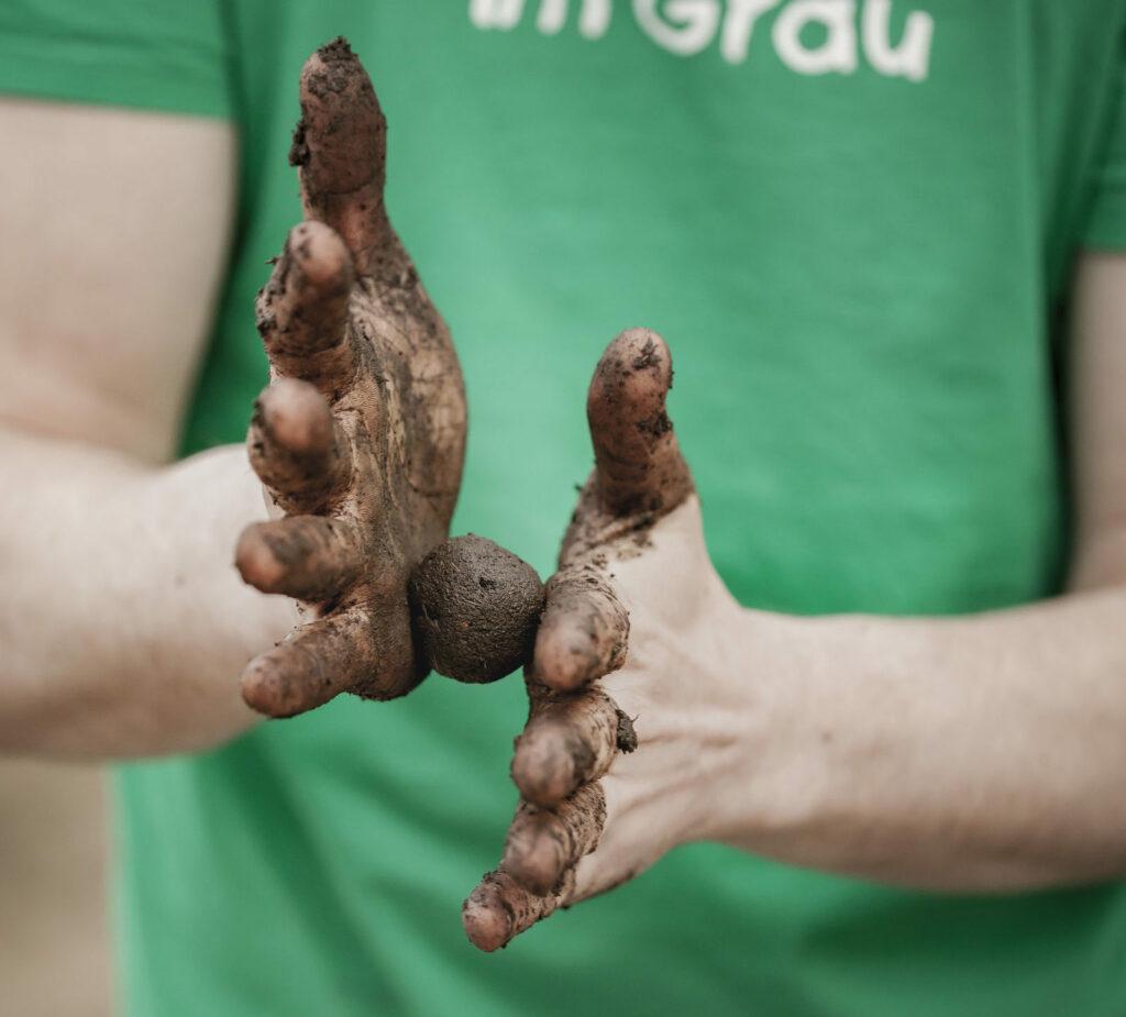Samenbombe wird zwischen zwei Händen gerollt