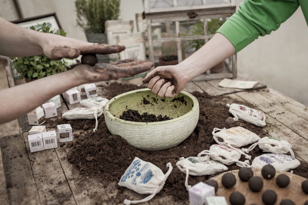 Samenbomben werden hergestellt