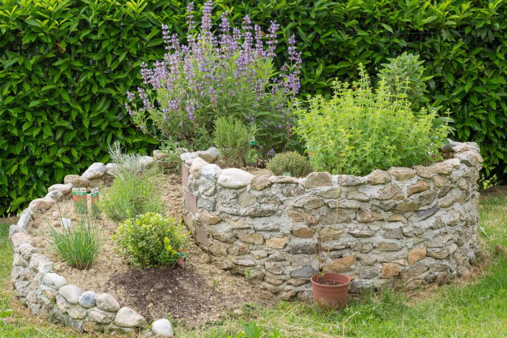 Kräuterschnecke im Garten mit Kräutern