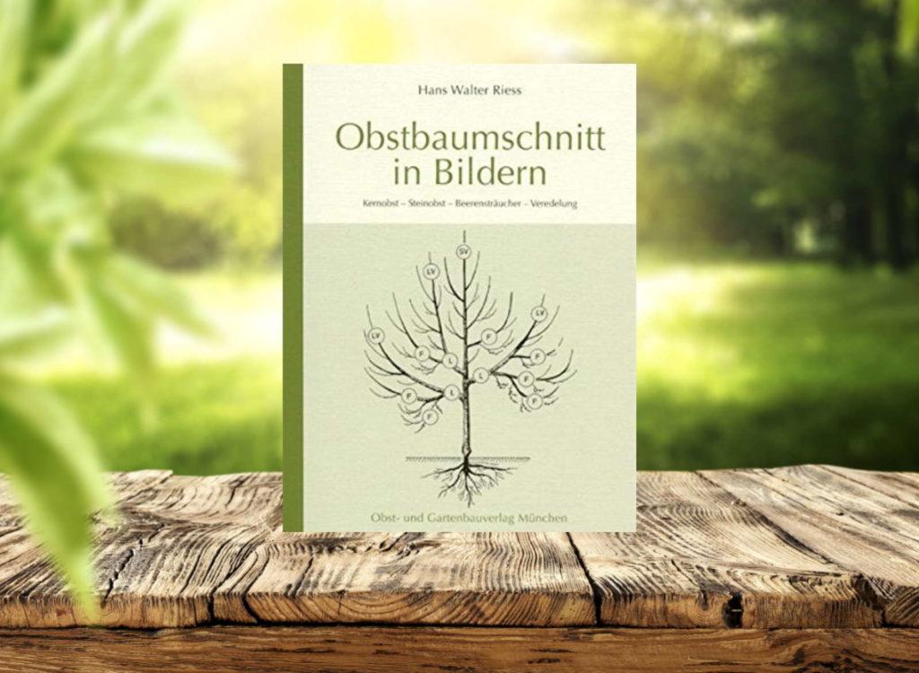 Buch auf Holztisch