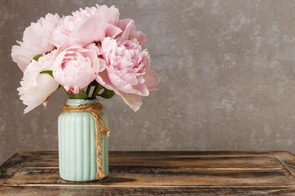 Pfingstrosen in Vase