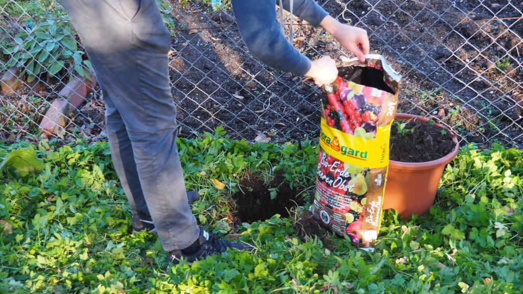Pflanzloch und Substratsack im Garten