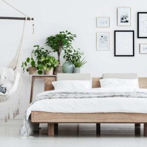 Pflanzen Im Schlafzimmer: Vorteile, Nachteile Und Geeignete Arten