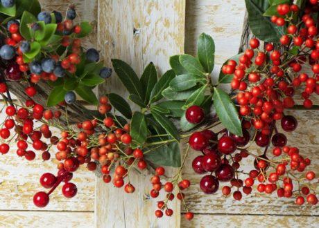 Weihnachtskranz Grün Mit Roten Beeren