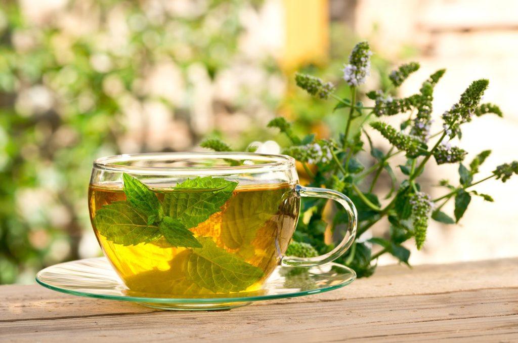 Teetasse mit Kräutertee aus Pfefferminze