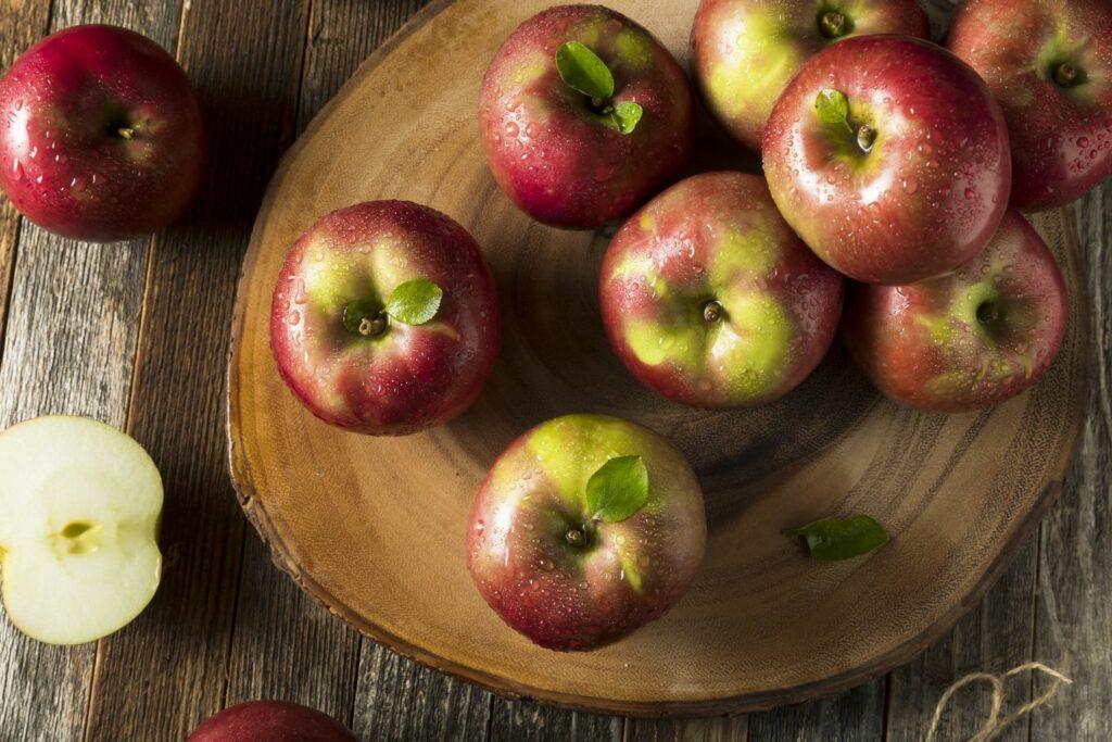 Apfel McIntosh