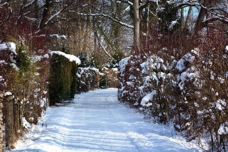 Straße im Winter mit Schnee