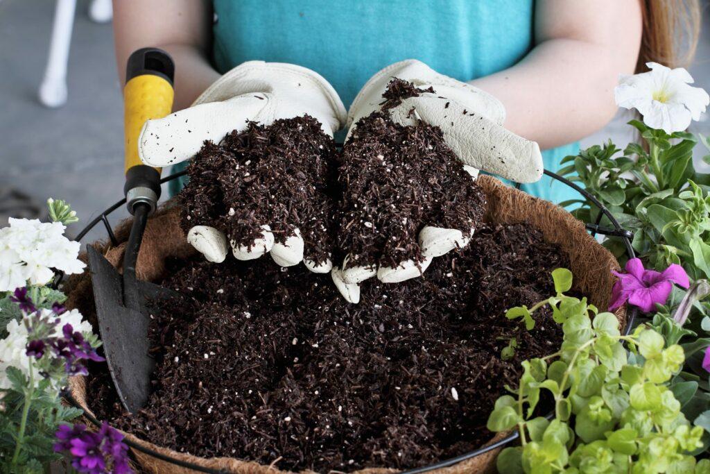 Blumenerde in Händen mit Gartenhandschuhen