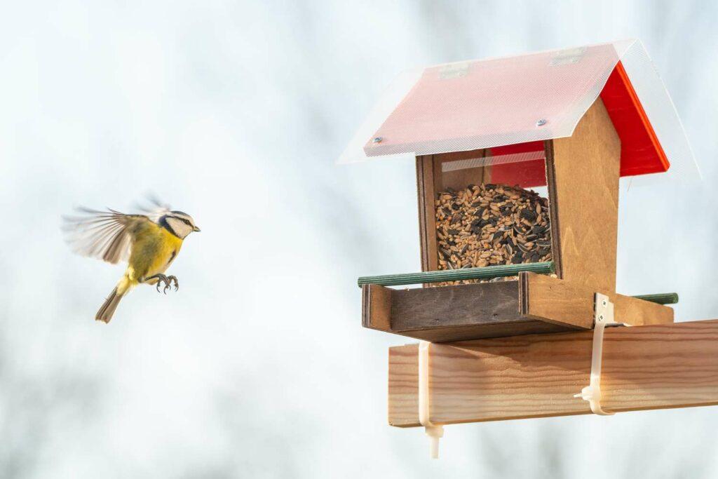 Selbst gebautes Vogelfutterhaus aus Holz