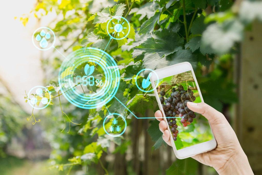 Smart Garden App