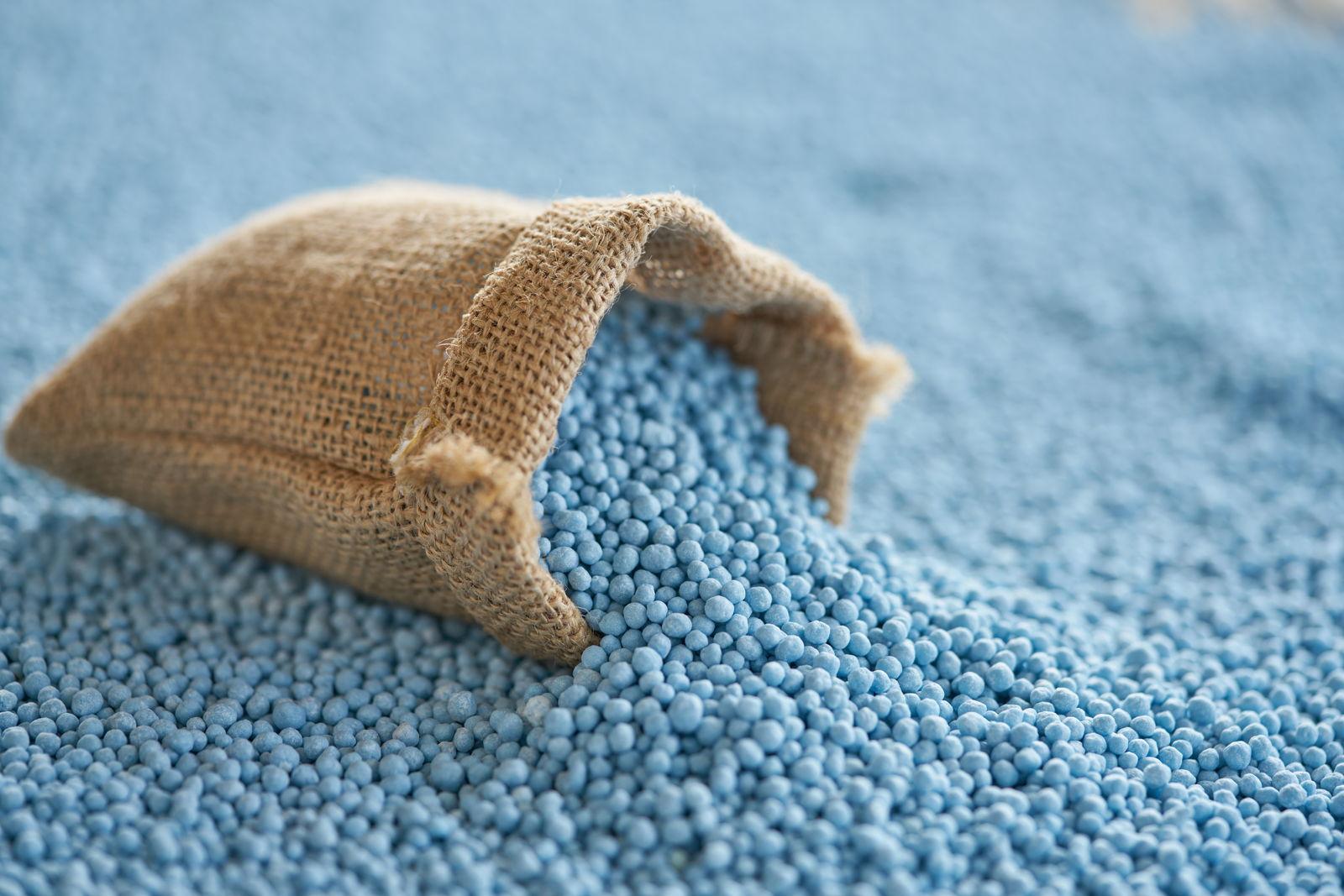 Lieblings Blaukorn: Anwendung, Wirkweise & Giftigkeit - Plantura #TO_77