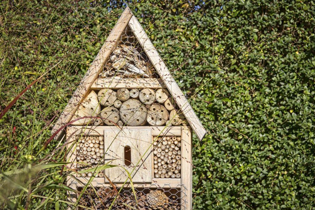 Ein Insektenhotel vor einer Hecke