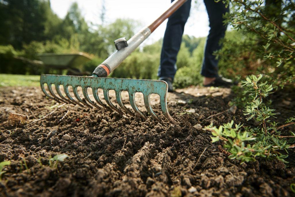 Erde rechen im Garten