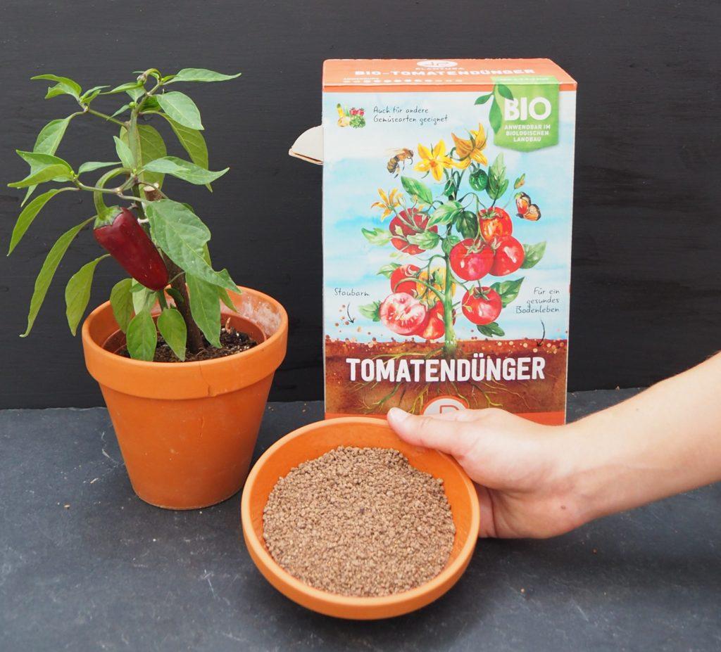 Chili mit Plantura Dünger