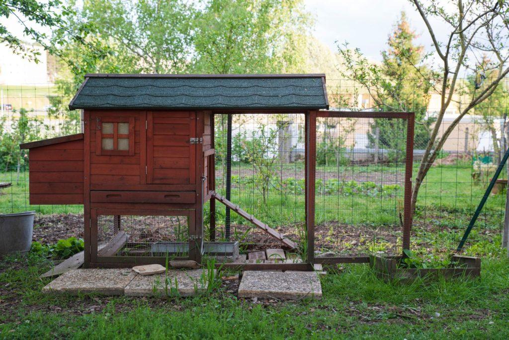 Hühnerstall im Garten