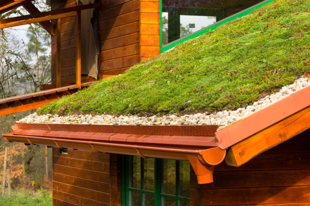 Tongranulat als Unterlage bei Dachbegrünung
