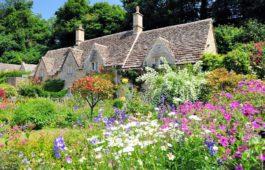 Bauerngarten: Die besten Pflanzen & Tipps zum Anlegen