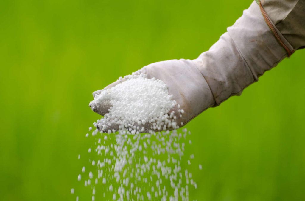 Weißer mineralischer Dünger in Hand mit Handschuh