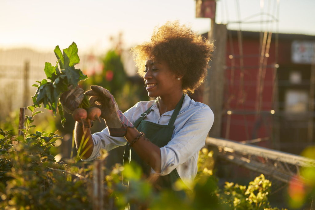 Frau arbeitet im Garten bei Sonnenschein