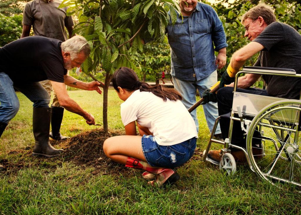 Gruppe von Leuten pflanzt einen Baum im Garten