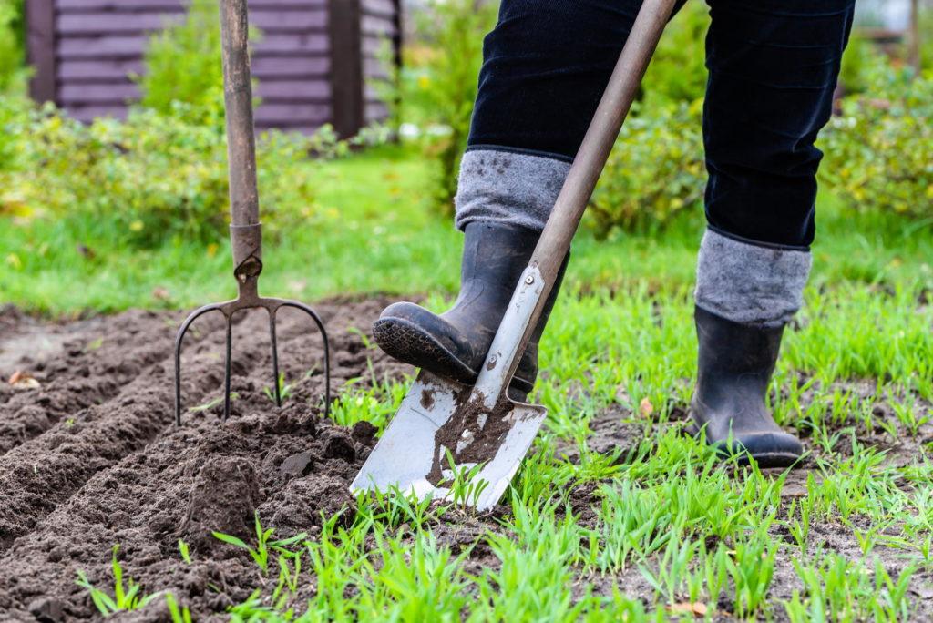 Person arbeitet mit Spaten im Garten