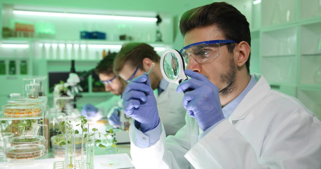 Wissenschaftler verwendet Pflanzen für Medikamente