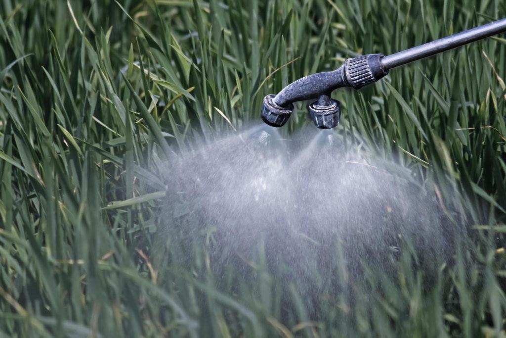 Rasen wird mit Flüssigdünger besprüht