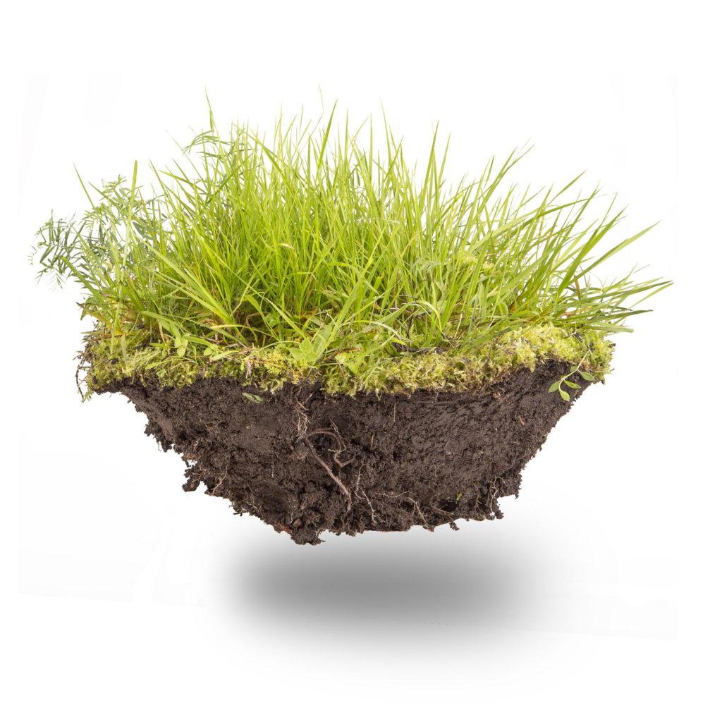 Stück Rasen in der Luft