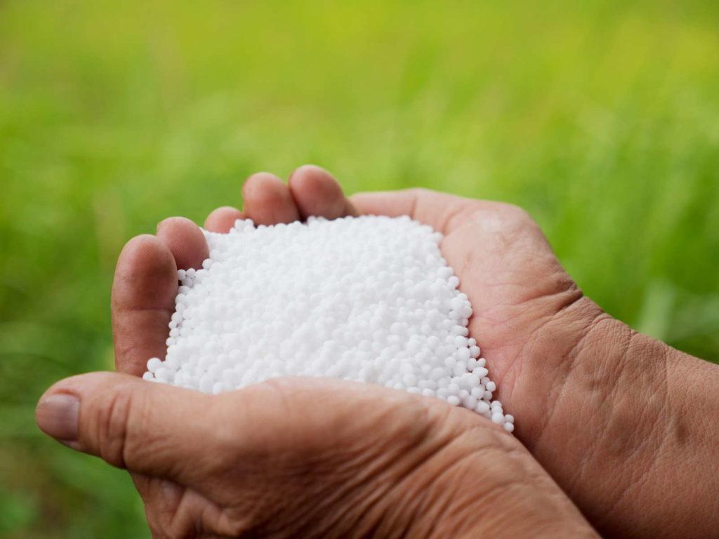 weißer mineralischer Dünger in zwei Händen
