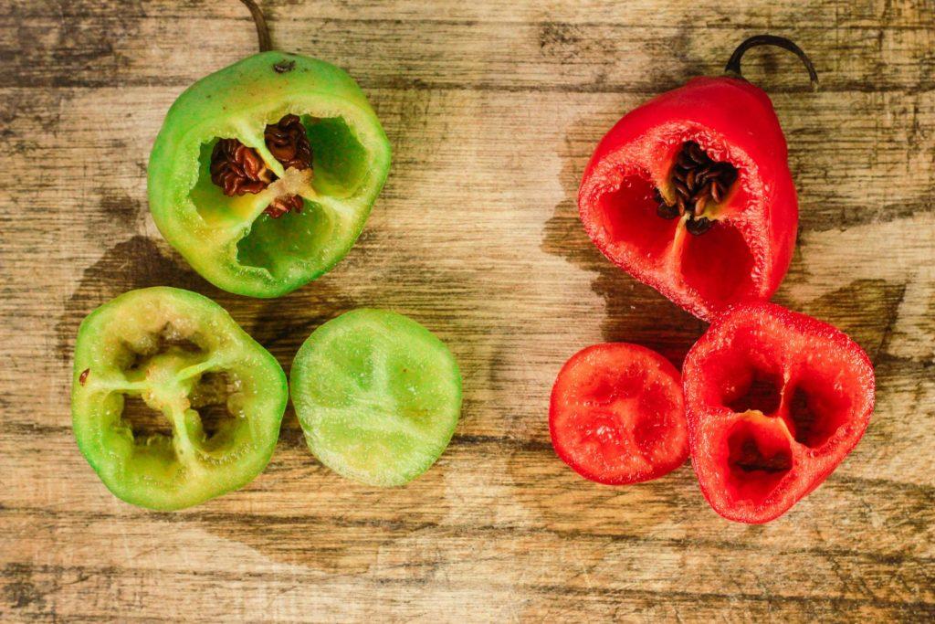 Aufgeschnittene Früchte des Chili-Baumes
