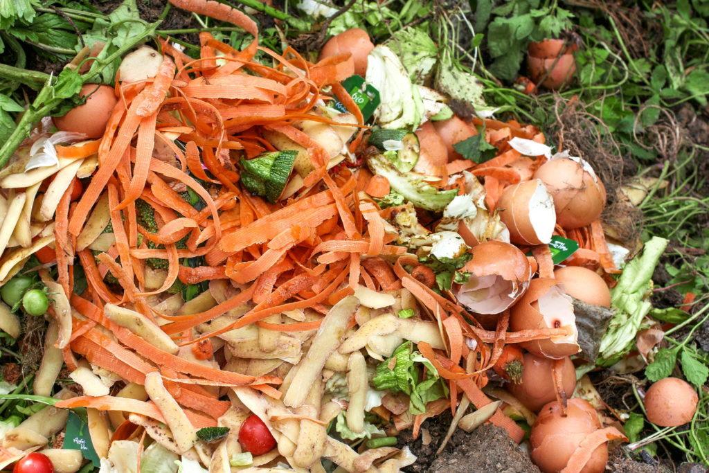 Eierschalen auf dem Kompost neben Resten