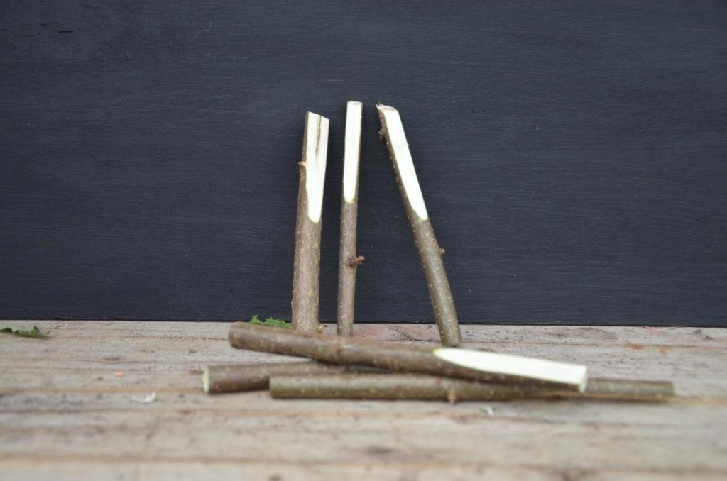 Holzstecken mit Pflanzennamen