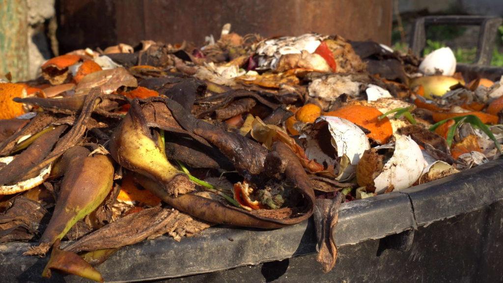 Gemüse und andere Küchenabfälle verrotten