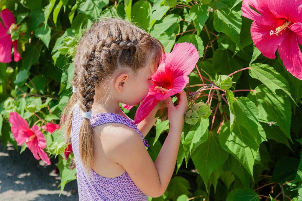 Mädchen riecht an Hibiskus