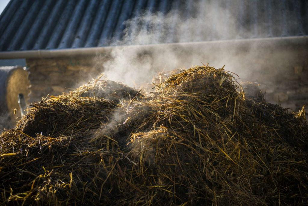 Kmopost mit Stroh bedeckt dampft