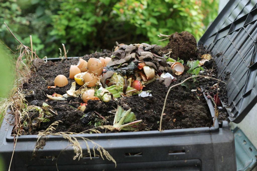 Kompost in einemn schwarzen Komposter im Garten