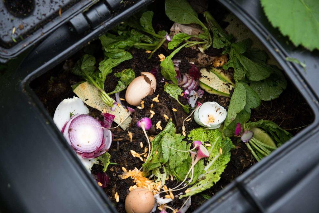 Kompost in einem schwarzen Komposter