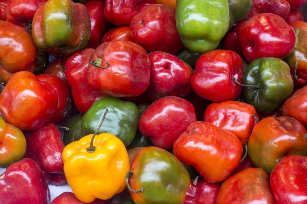 Bunte Chilis